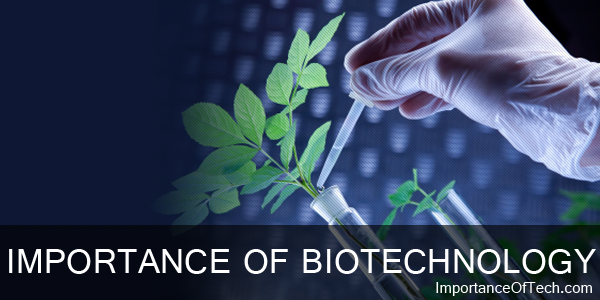 Importance Of Biotechnology