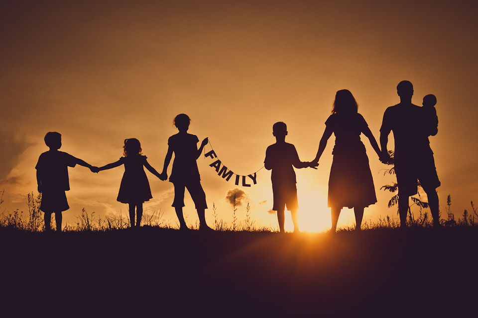 Importance of family: No Place Like Home | My Essay Point