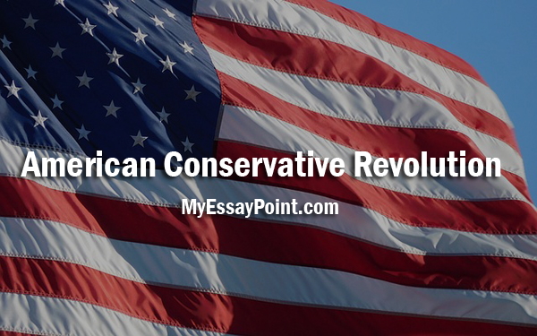 the conservative revolution The conservative judicial revolution the right has built over decades the  infrastructure to remake the judiciary jay cost jul 14, 2018 9:00 pm president .