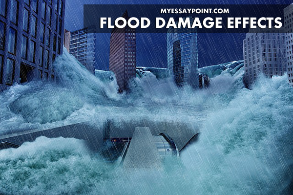flood damage effects on our lives my essay point flood damage effects