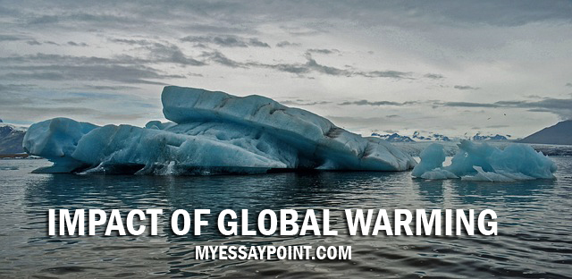 impact of global warming essay