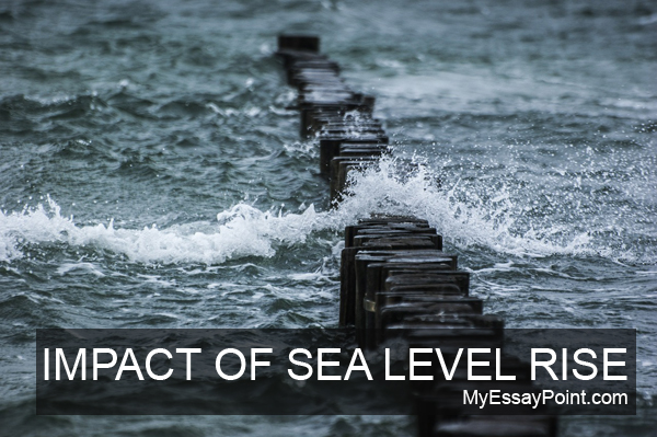 Impact of sea level rise