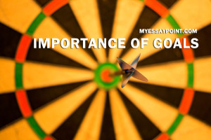 importance of goals