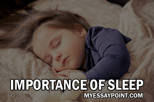 importance of sleep  my essay point