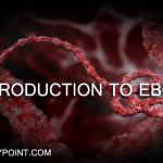 introduction to ebola essay