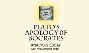 an analysis of socratess philosophy Socrates i  he never wrote any philosophical works he conducted philosophy by holding conversations with just about anyone who would talk with him.
